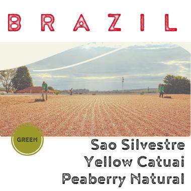 Brazil Sao Silvestre Peaberry Natural (Green)-0